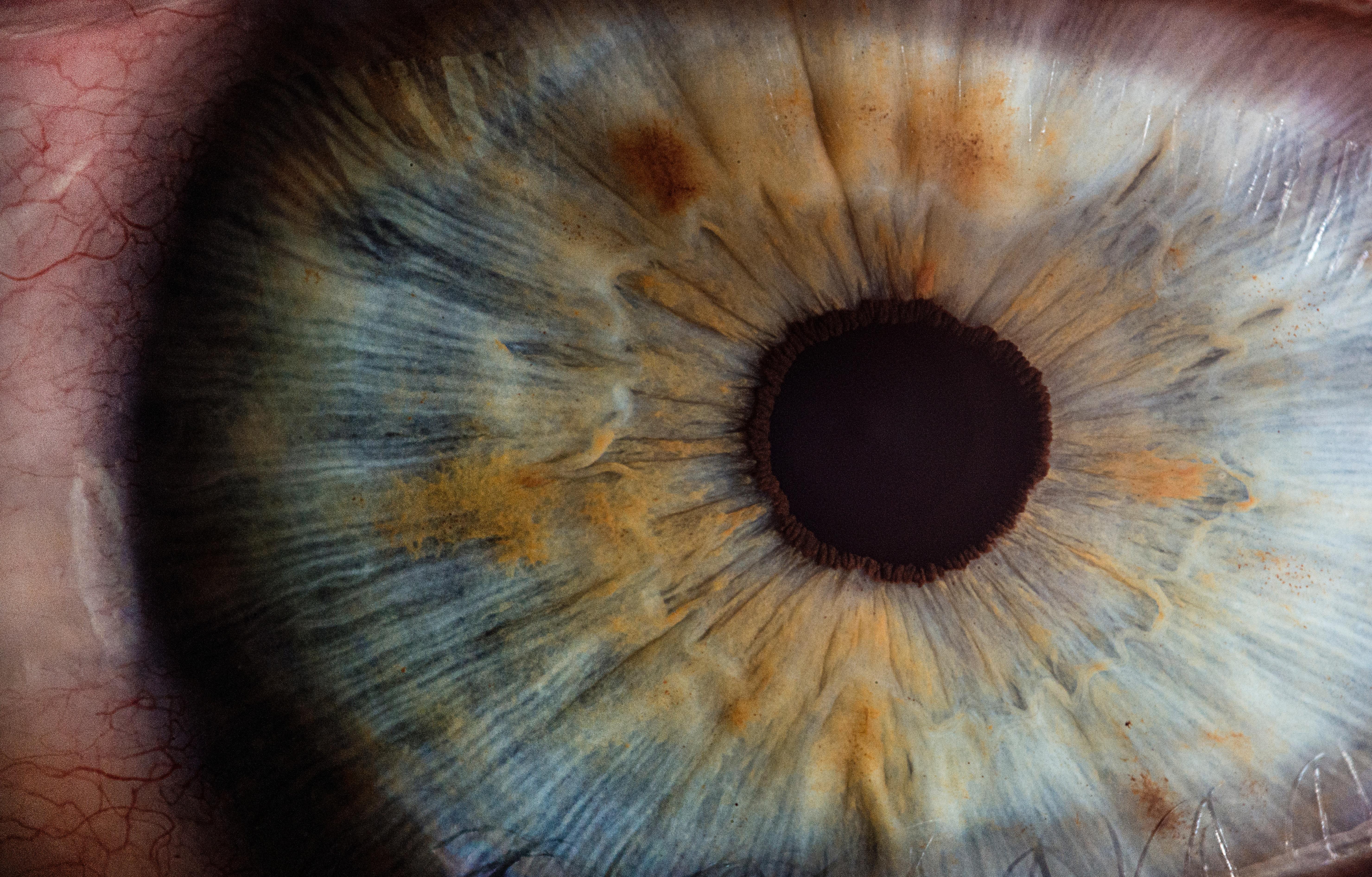 Visión Artificial: ¿Qué se ve a tráves de un Ojo Biónico?